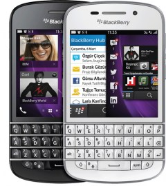 blackberry_rostov6